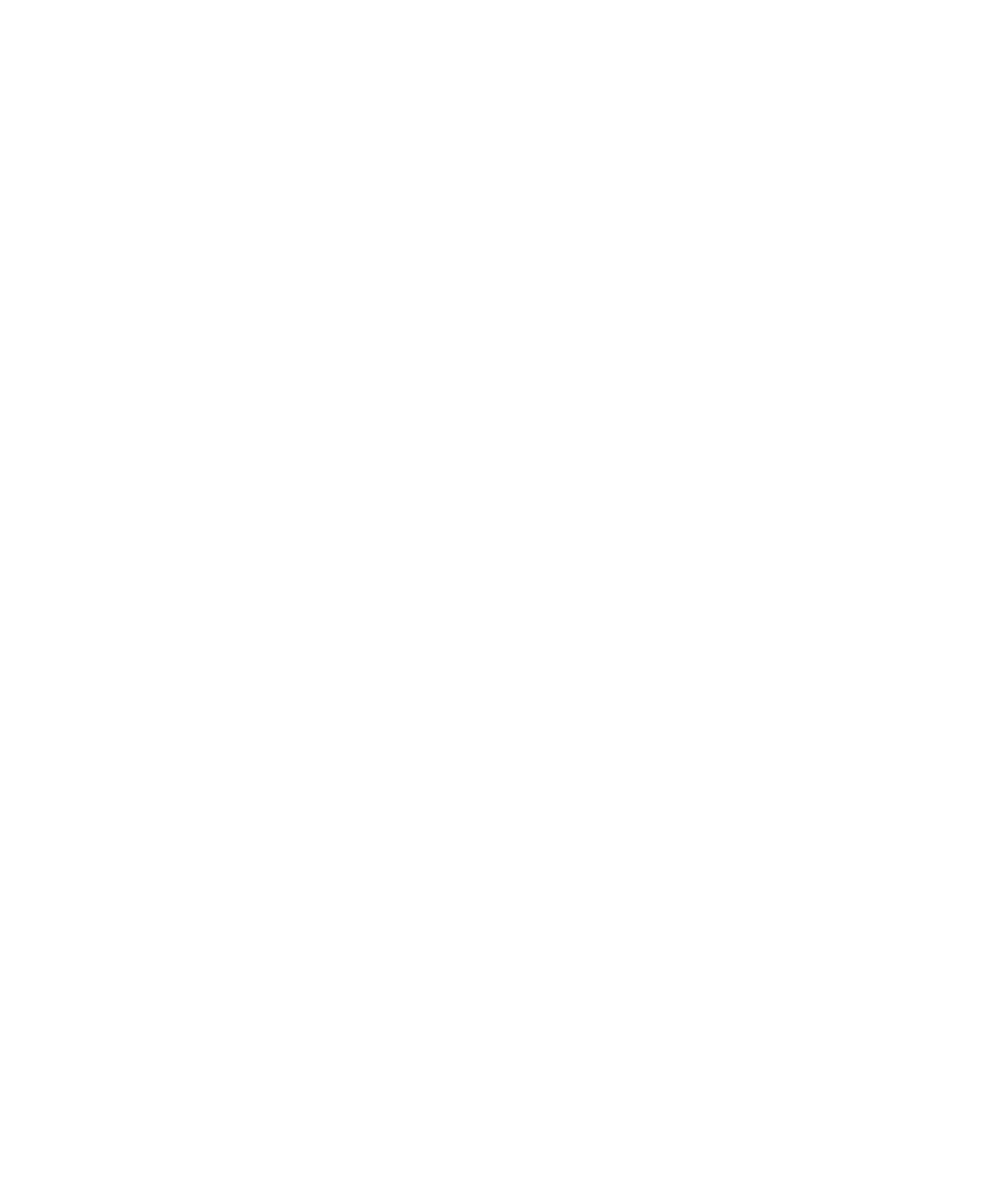 THE MATT VIDEO